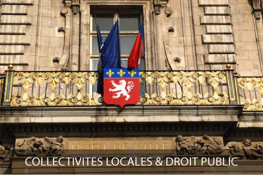 Domaines d'activités : Droit de la collectivité et droit public, hélios avovats