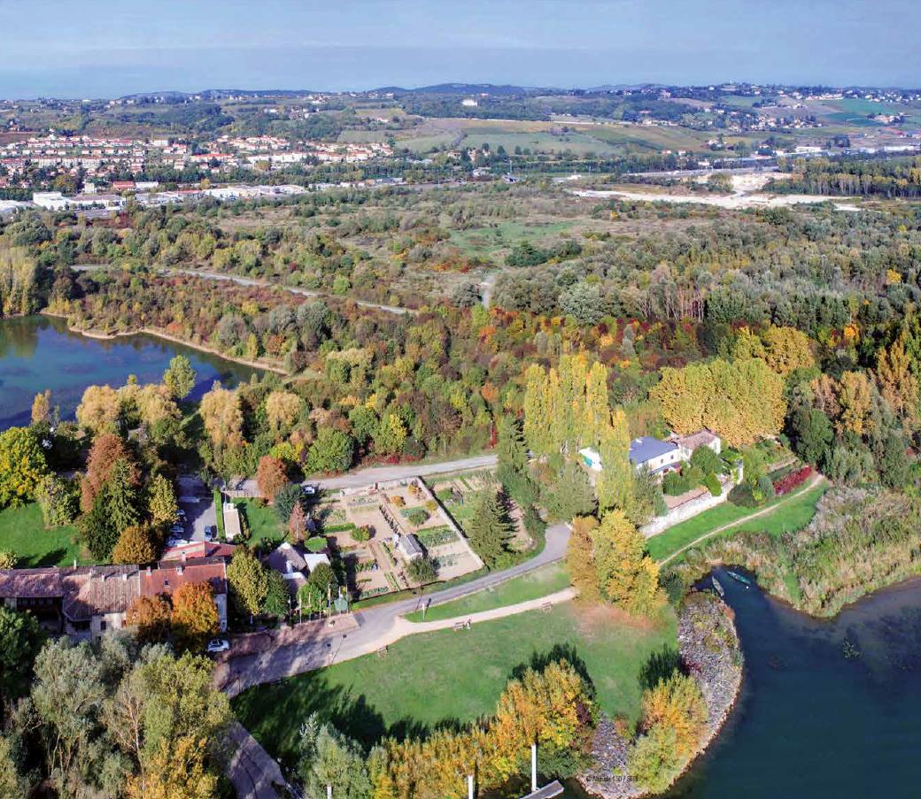 Gain de biodiversité au futur Port du Rhône